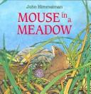 Mouse in a Meadow