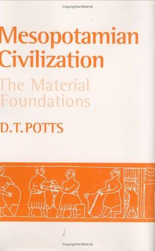 Image for Mesopotamian Civilization : The Material Foundations
