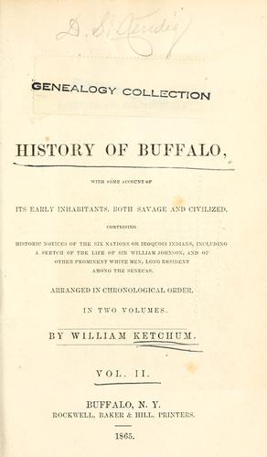 Download An authentic and comprehensive history of Buffalo