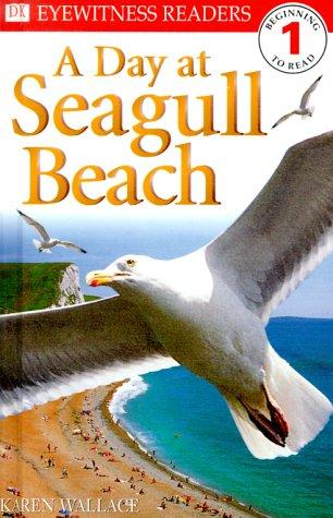 A day at Seagull beach