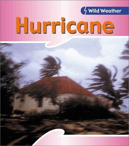 Download Hurricane (Wild Weather)