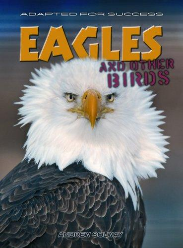 Eagles And Other Birds (Adapted for Success)