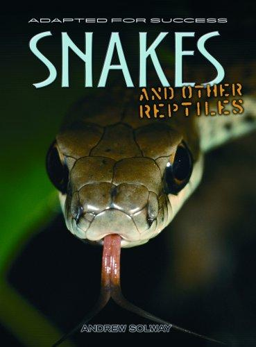 Snakes And Other Reptiles (Adapted for Success)