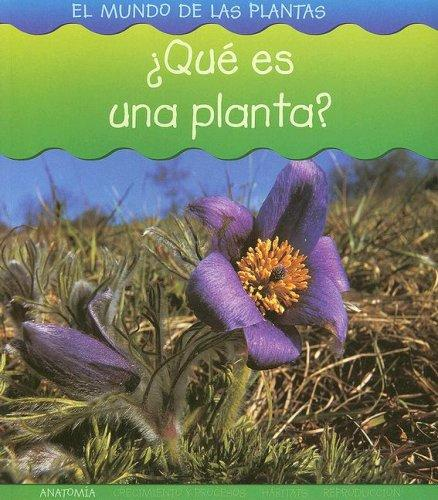 Que Es Una Planta? (El Mundo De Las Plantas/World of Plants) by Louise Spilsbury