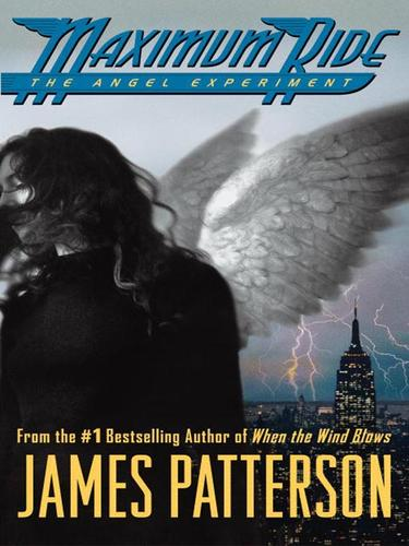 Download The Angel Experiment