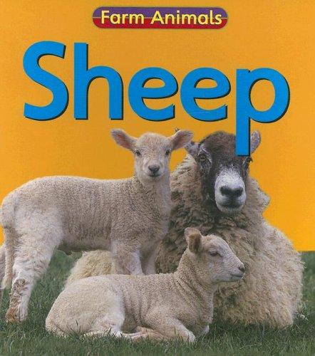 Sheep (Farm Animals)