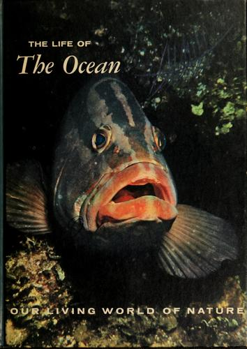 Download The life of the ocean