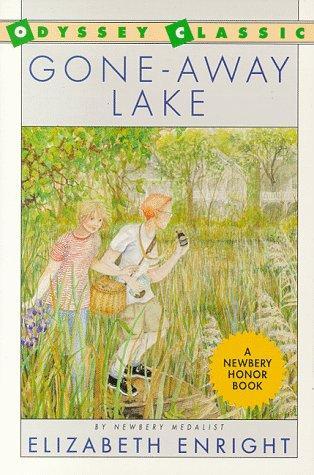 Download Gone-Away Lake