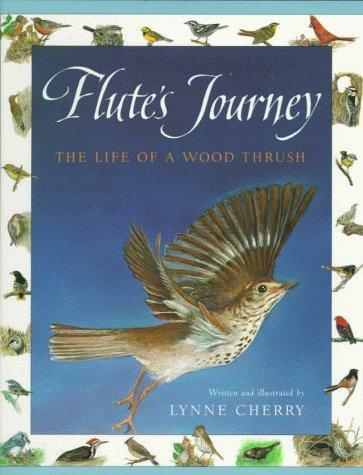 Download Flute's journey