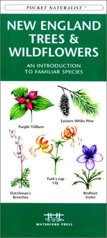 New England Trees & Wildflowers by James Kavanagh