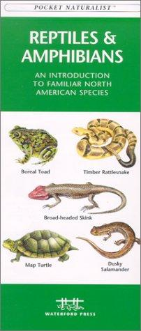 Reptiles & Amphibians by James Kavanagh