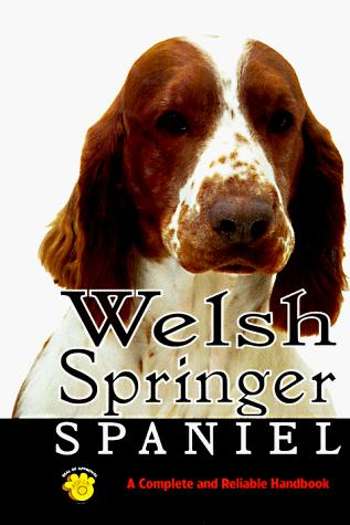 Welsh Springer Spaniel by Linda S. Brennan