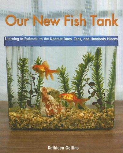 Our New Fish Tank by