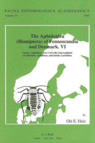 The Aphidoidea (Hemiptera) of Fennoscandia and Denmark: Family Aphididae : Part 3 of Tribe Macrosiphini of Subfamily Aphidinae, and Family Lachnidae (Fauna Entomologica Scandinavica) by O. E. Heie