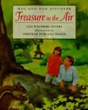 Meg and dad discover treasure in the air by Lisa Westberg Peters